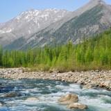 Melkovodnaja-reka-na-Altae_thumb