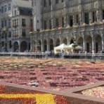 Цветочный фестиваль в Брюсселе