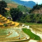 Экзотическое путешествие во Вьетнам
